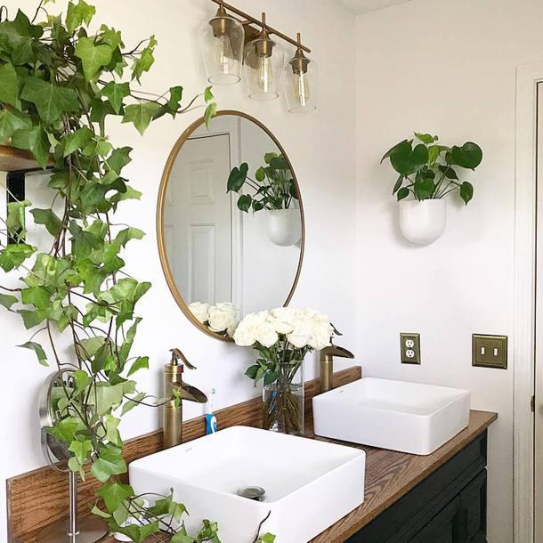 salle de bain avec plantes vertes