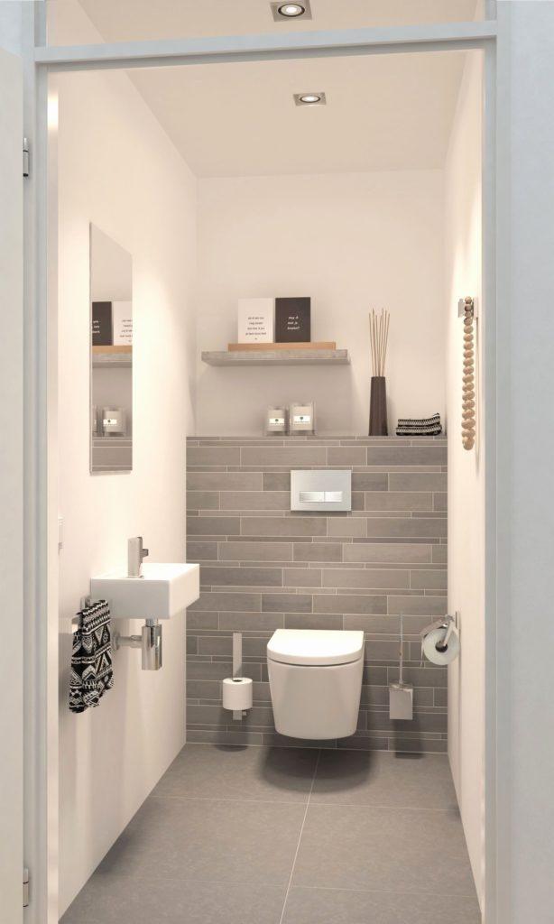 toilettes grises