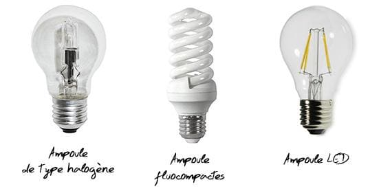 Les trois diffèrents types d'ampoules