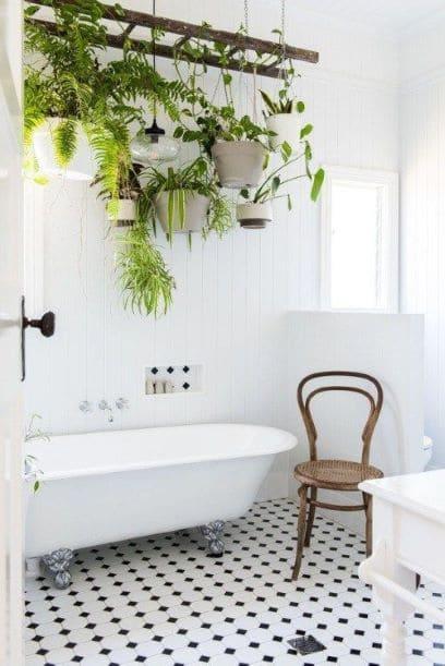 salle de bain et plantes