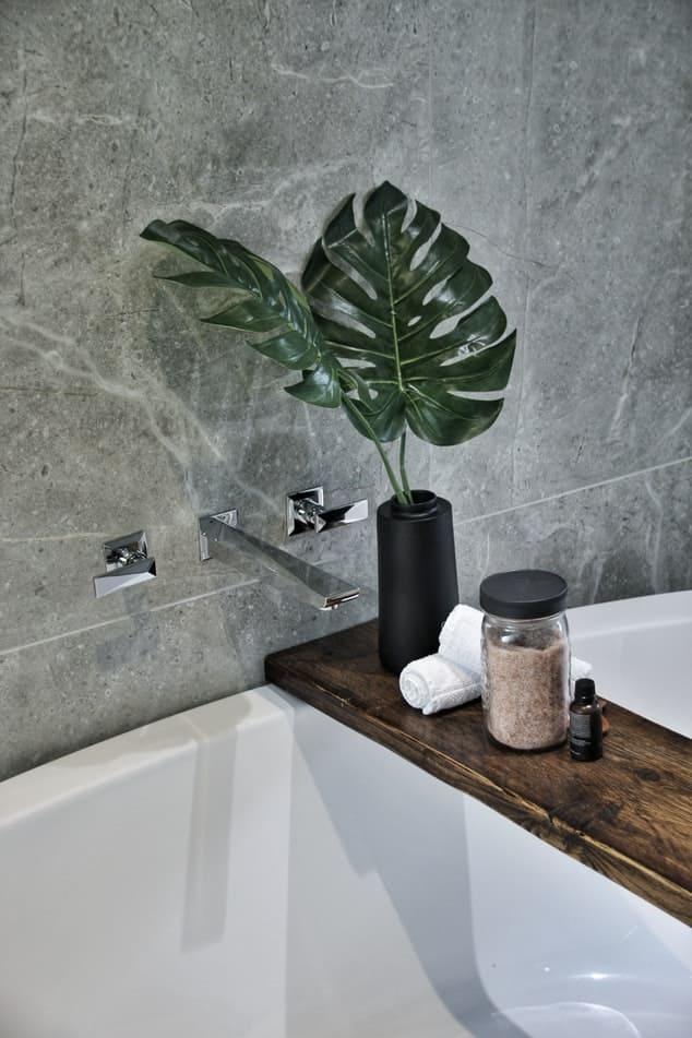 Plante sur planche dans baignoire