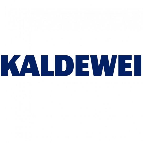 Produit D''Entretien Désinfectant pour bains tourbillons 1l Kaldewei
